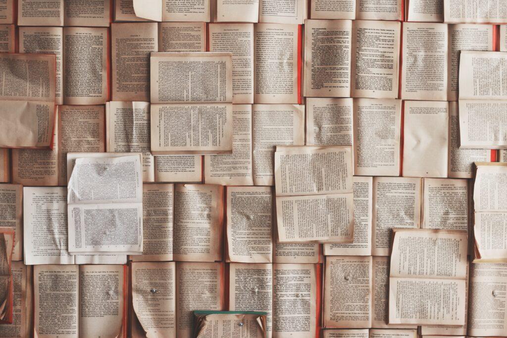 non siamo bookblogger: blog culturale